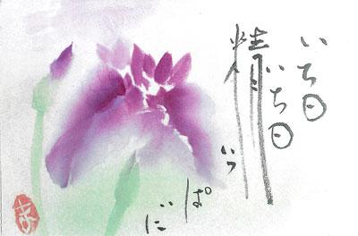 400絵葉書2