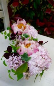flowerarenzi