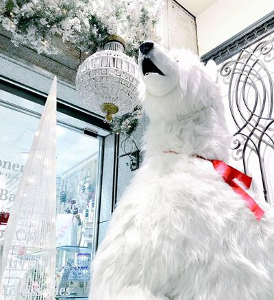 四条本店クリスマス